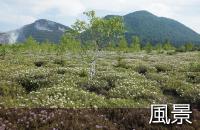 釧路観光情報~風景
