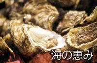 釧路観光情報~海の恵み