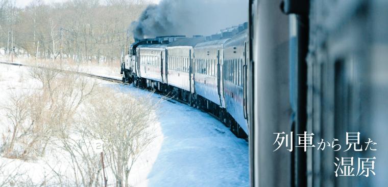 釧路観光情報~列車からみた湿原