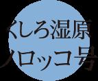 釧路観光情報~釧路湿原ノロッコ号