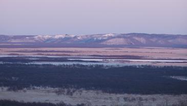 湿原写真2